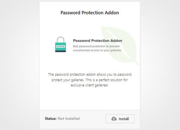 Password Protection Addon