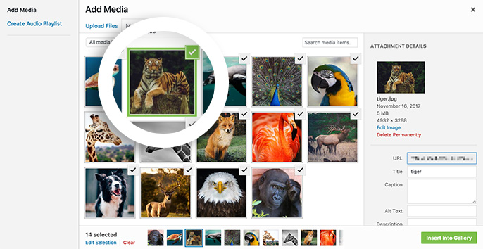 Select the images you want to add to your gallery from the Media Library.