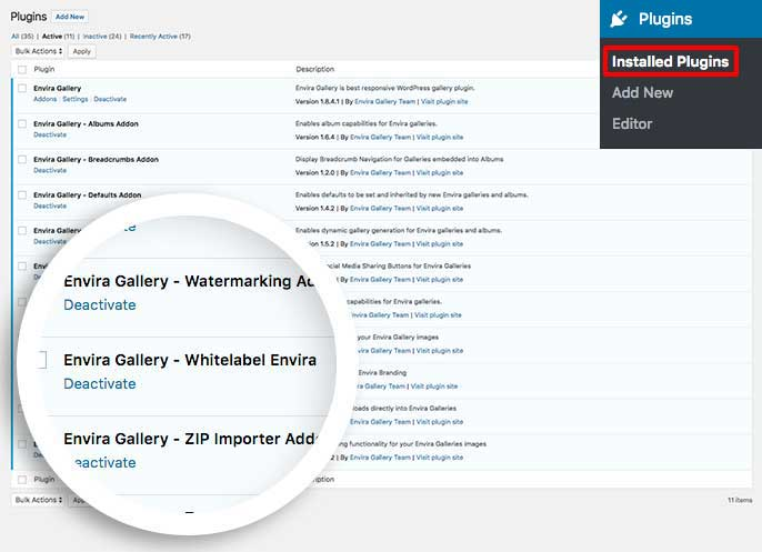 Activate the custom plugin to white label Envira gallery