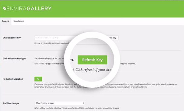 Select the Refresh Key button in the Envira Gallery Settings screen after upgrading your license.