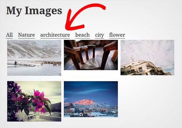 Image Gallery with Category Filter