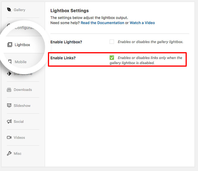 Enable the external links for your gallery on the lightbox tab