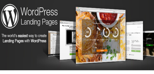 WordPress Landing Pages Banner