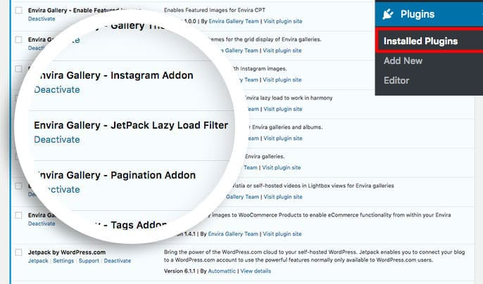 Create this plugin to use JetPack lazy load and Envira lazy load together