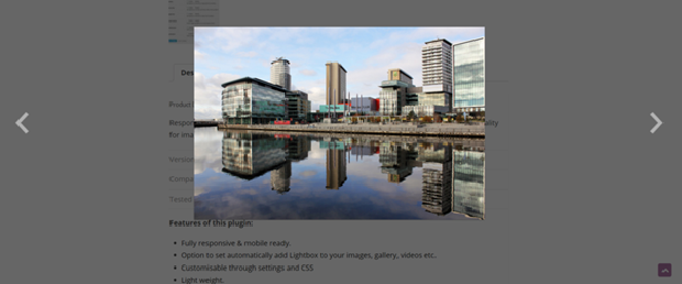 An example lightbox, with a photo of a city shown it front of the rest of the page's content