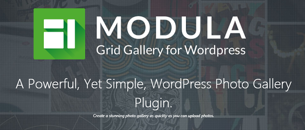 Modula banner, with logo and text overlaying an example gallery