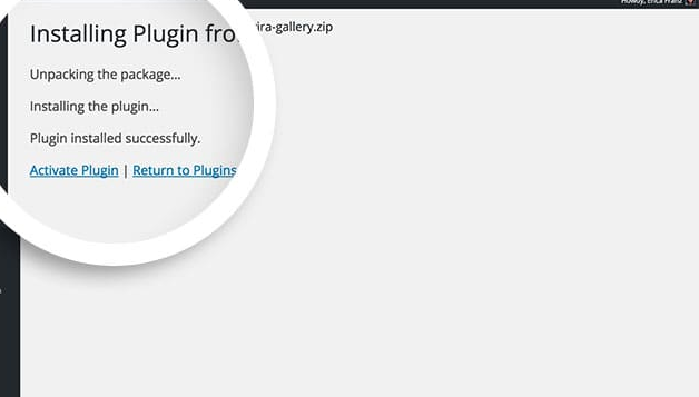 Click Activate plugin to activate Envira Gallery on your site