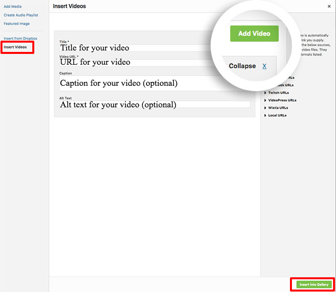 Fill in the information for your video to create a video gallery using Envira's Video Addon