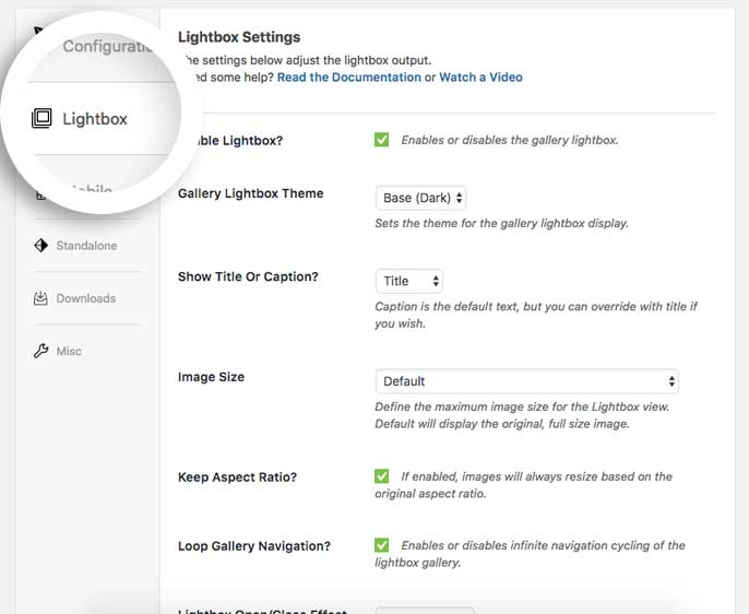 Envira Lightbox Options