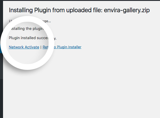 For multisite installation select the Network Activate once you've uploaded envira-gallery.zip