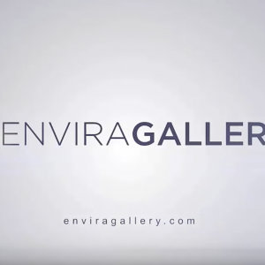 Envira Gallery overview