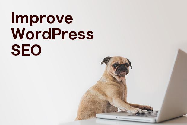 10 Ways to Improve SEO Within Wordpress