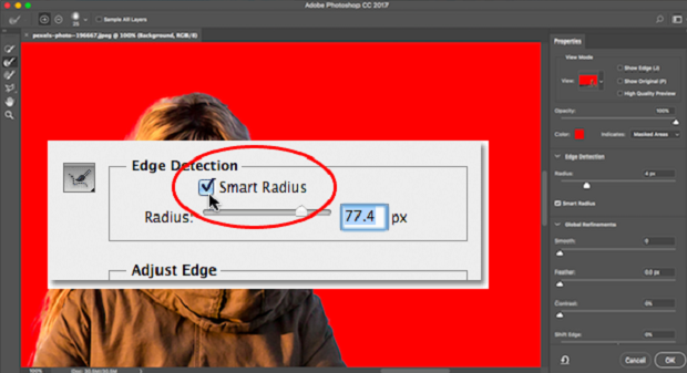 The Smart Radius box being checked withing the Edge Detection settings in Photoshop