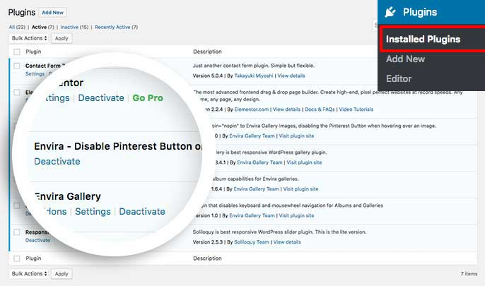 Disable the Pinterest Pin It Button on Envira Gallery images