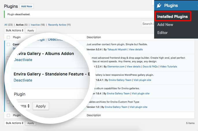 Activate the custom plugin to enable archives for standalone gallery links
