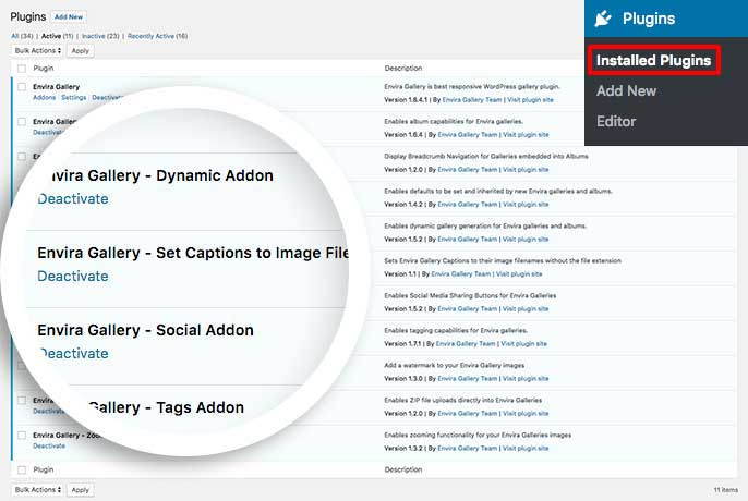 Activate the custom plugin to set captions as image filename for your gallery images