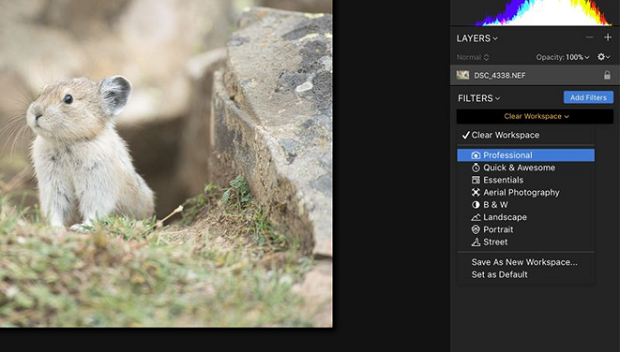 A image of a mouse open in Luminar, with the filter tab open on the side