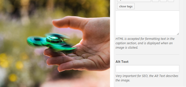 An image of a person using a green fidget spinner next to the image alt text entry box