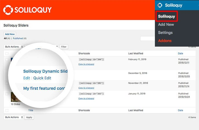Soliloquy Dynamic Slider Default Item