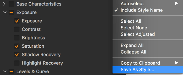 The Save As Style option within the adjustments menu