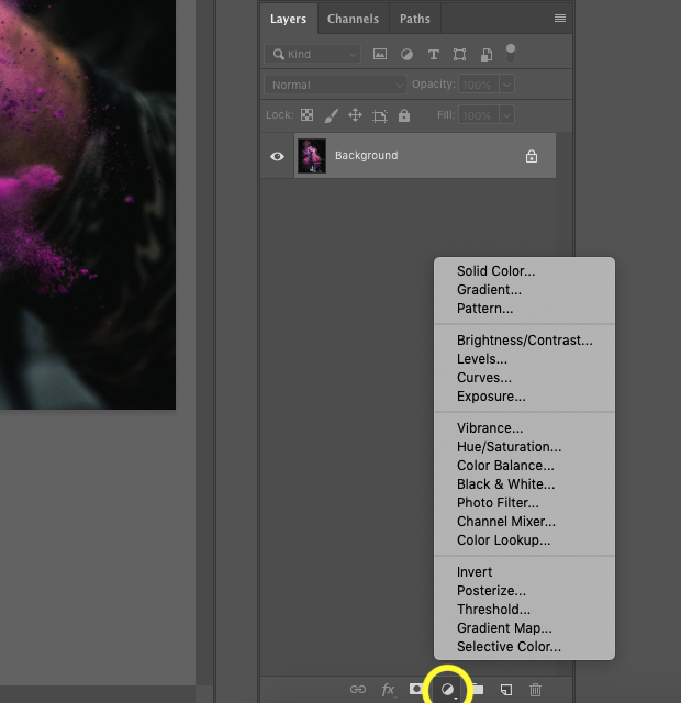 Close up screenshot of Photoshop's Adjustment Layer option selected and highlighted with yellow circle