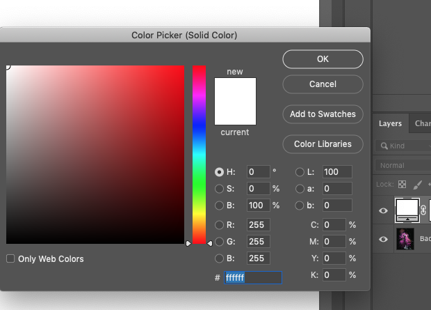 Photoshop's color picker box