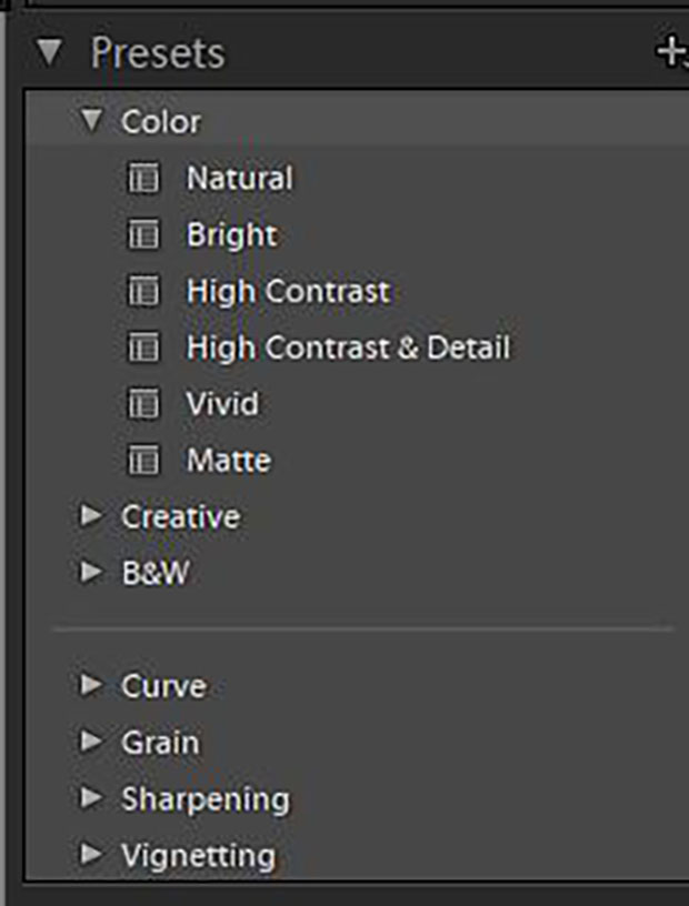 Presets tab in Lightroom opened to reveal downloaded presets