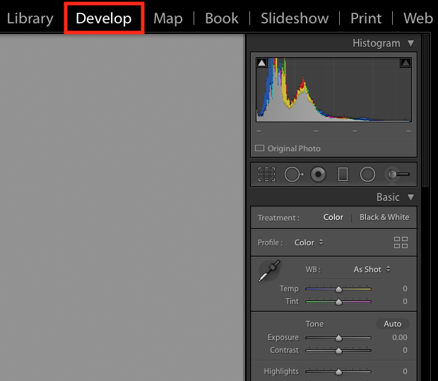 Screenshot of Adobe Lightroom's Develop panel, emphasized with a red box around the word