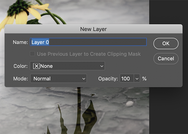 New Layer dialog box in Photoshop