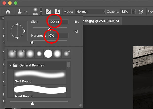 Clone Stamp Tool size and hardness circled in red and set to 100px and 0% respectively