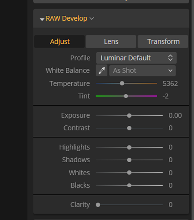 Adjust tab in Luminar's RAW Develop drop-down menu