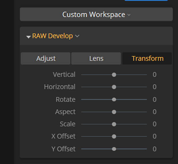 Transform tab in Luminar's RAW Develop drop-down menu