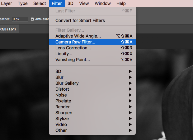 """Filter"" option of Photoshop toolbar extended and ""Camera Raw Filter"" option selected"