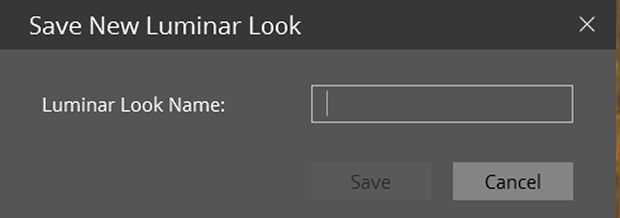 """Save New Luminar Look"" dialog box in Luminar"
