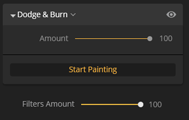 Dodge & Burn panel in Luminar