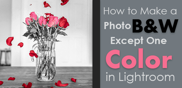 how to make a photo b&w except one color in Lightroom
