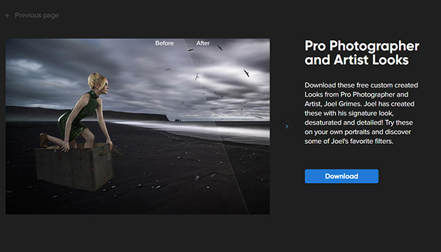 Pro Photographer and Artist Looks in Luminar