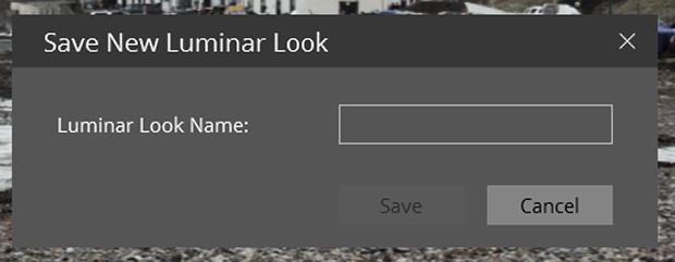 Save New Luminar Look dialog box