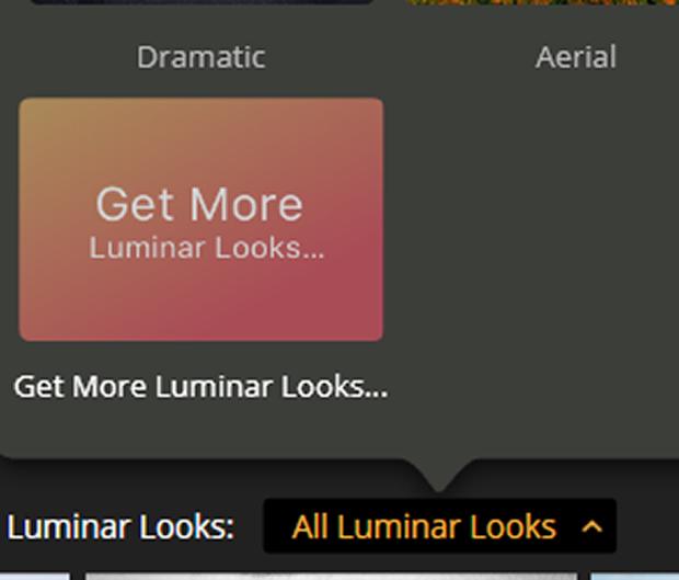 All Luminar Looks button