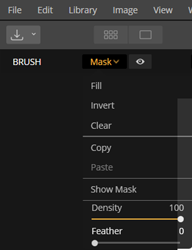 Brush mask options selected in Luminar