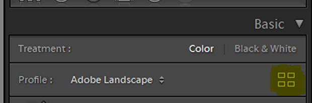Lightroom basic develop module with Profile Browser button highlighted in yellow