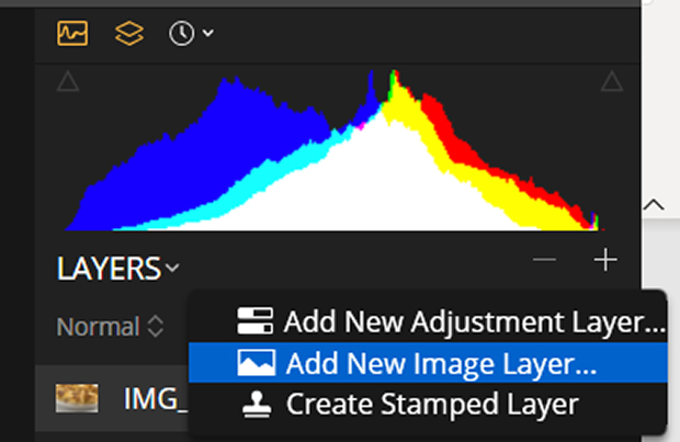 Layers panel with Add New Image Layer... selected in Luminar