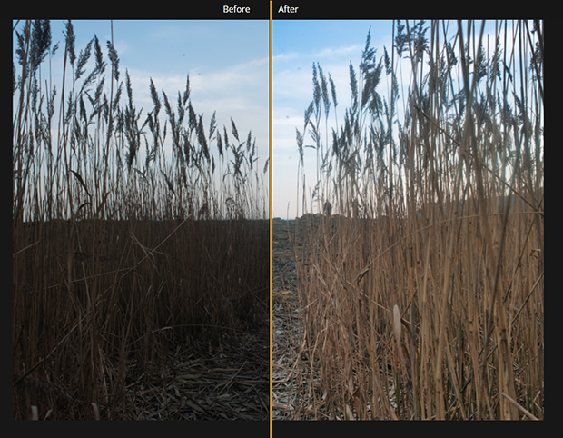 Before and after exposure adjustment