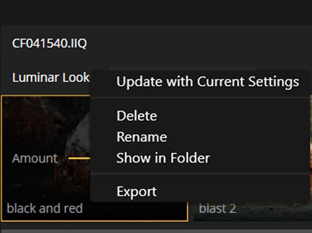 Editing menu in Luminar