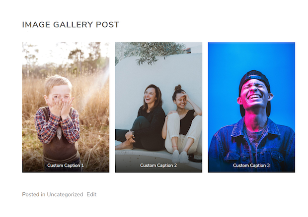 Steps to Adding a Photo Gallery to WordPress