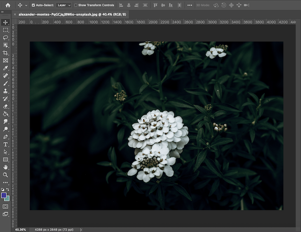 apply texture to images in photoshop