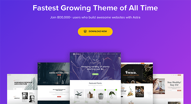 best photography wordpress themes astra