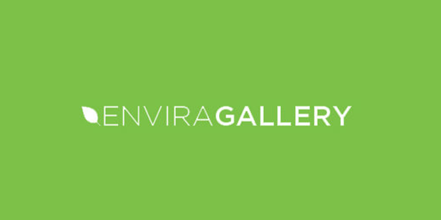 best free wordpress plugins for selling photos envira gallery