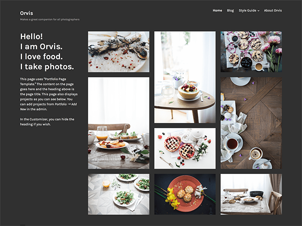 best photography wordpress themes orvis
