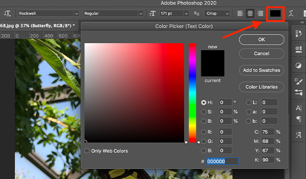 photoshop color picker for text